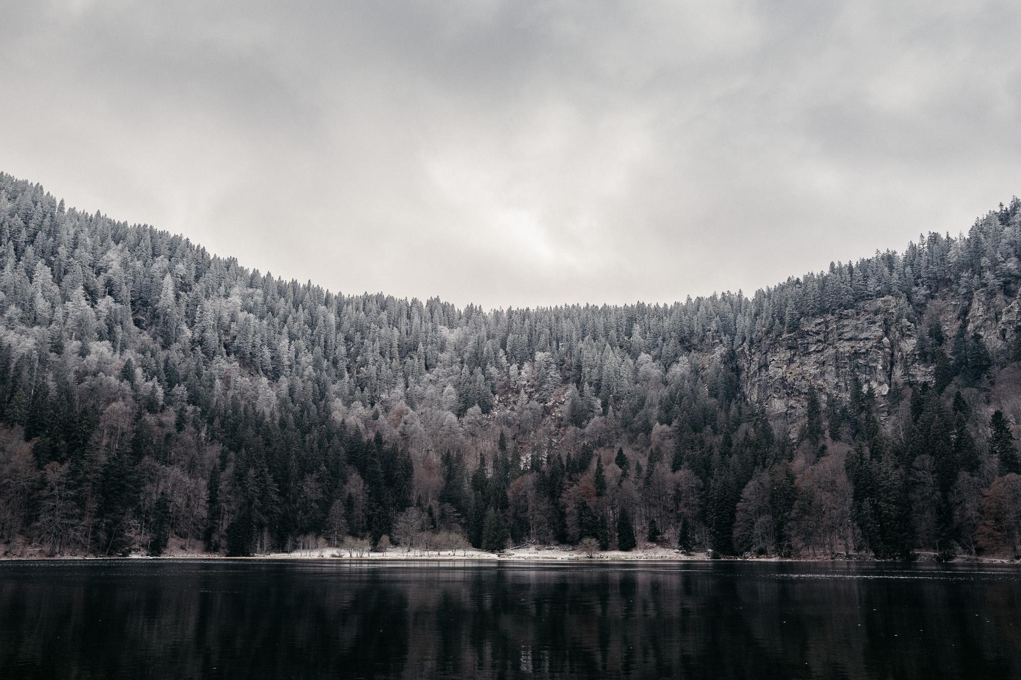 Voyage foret noire - Warren Lecart Photographe